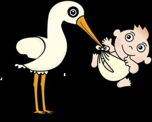 Trymestr ciąża
